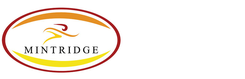 Mintridge Foundation Nutrition Partner - Nibble